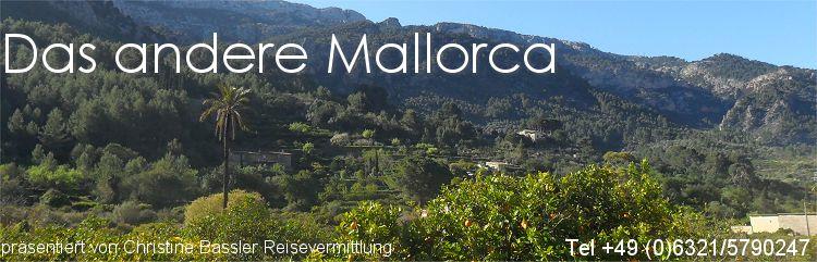 Zur Orangenblüte nach Mallorca