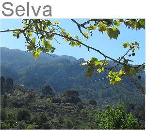 Selva Caimari Moscari