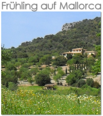 Fr�hling auf Mallorca